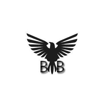 Black Bird Garage Doors logo