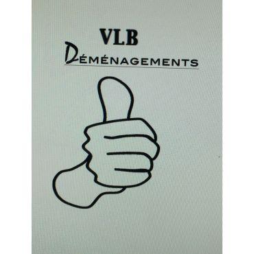 Déménagement VLD PROFILE.logo