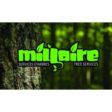 Services d'Arbres Millaire PROFILE.logo
