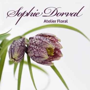 Sophie Dorval Fleuriste logo