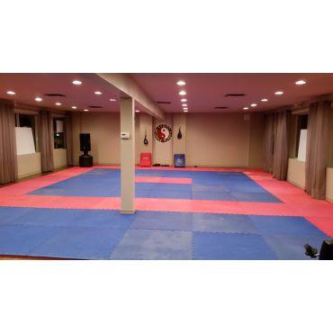 Kempo Karate Fitness martin kk fitness PROFILE.logo