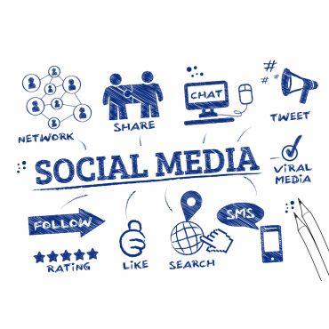 Social Media Management - Convex Studio