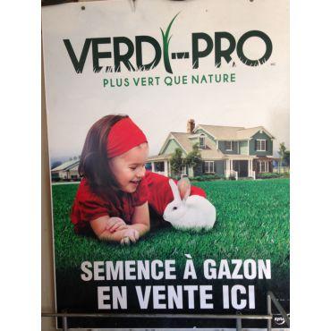semence à gazon Verdi Pro