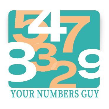 Your Numbers Guy PROFILE.logo