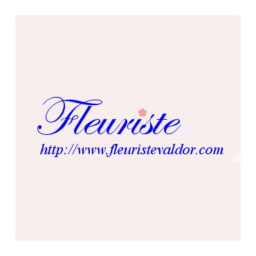 Fleuristevaldor.com PROFILE.logo