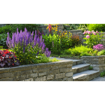 Garden and yard landscaping