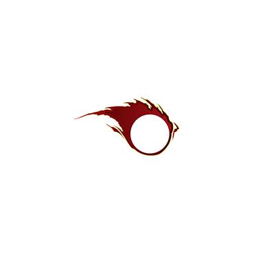 Speedy Mechanic PROFILE.logo