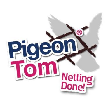 Pigeon Tom PROFILE.logo