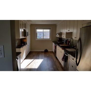 whole main floor and kitchen reno