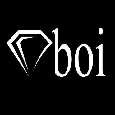 The Diamond Studio logo