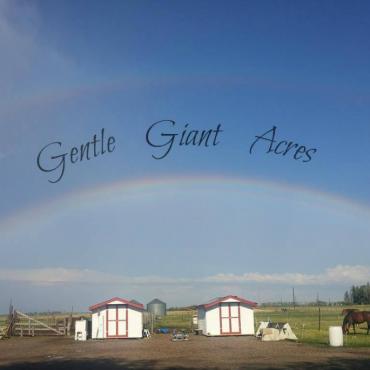 Gentle Giant Acres PROFILE.logo