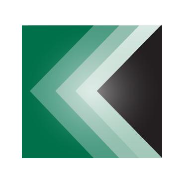 Cory Koss Professional Corp. PROFILE.logo