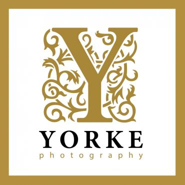 Yorke Photography PROFILE.logo