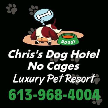 Chris's Dog Hotel No Cages Luxury Pet Resort PROFILE.logo