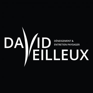 David Veilleux Déneigement & Entretien Paysager Inc. PROFILE.logo