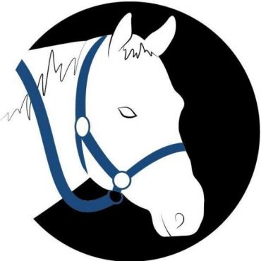 Blue Rein Ranch Counselling & Animal Assisted Therapy logo