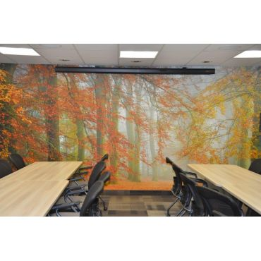 Autumn is Here wall mural