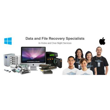 Professional File Recovery