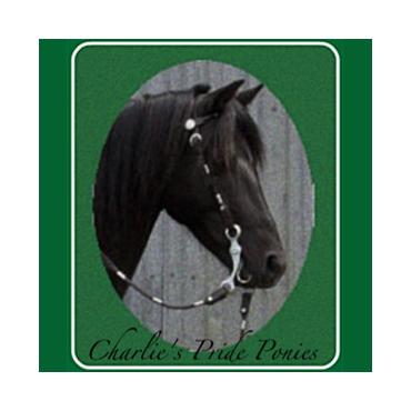 Charlie's Pride Ponies PROFILE.logo