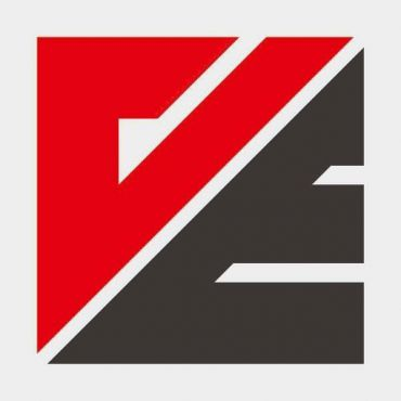 VE Stone Ltd. logo