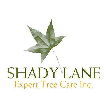 Shady Lane Expert Tree Care Inc PROFILE.logo