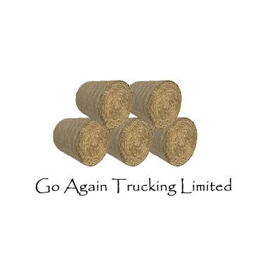 Go Again Trucking Limited logo
