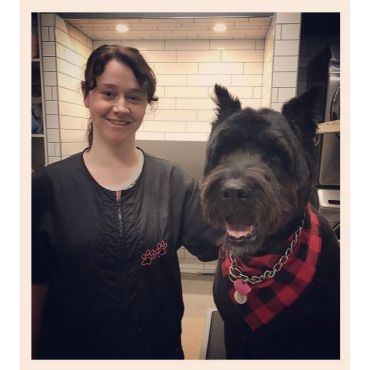 Bark & Fitz Collingwood in Nottawa, ON | 7054457344 | 411 ca