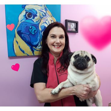 DOGZ AND KATZ COIFFURE professional pet grooming PROFILE.logo