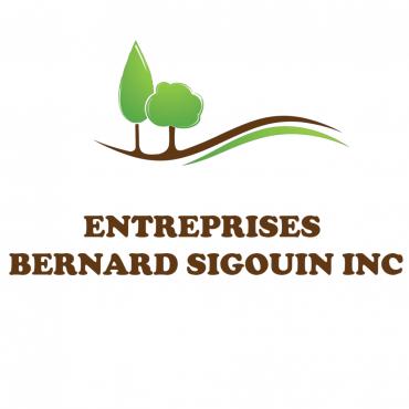 Entreprises Bernard Sigouin Inc logo