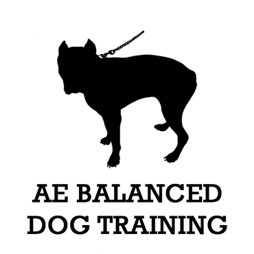 AE Balanced Dog Training PROFILE.logo