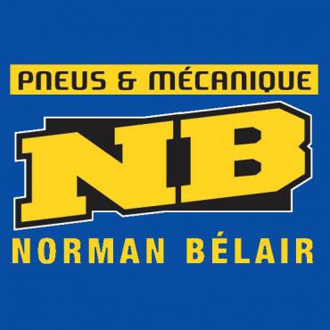 Pneus et Mécanique Norman Bélair PROFILE.logo