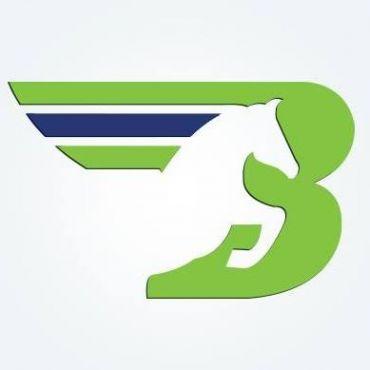Bronco Transportation Systems Inc. logo