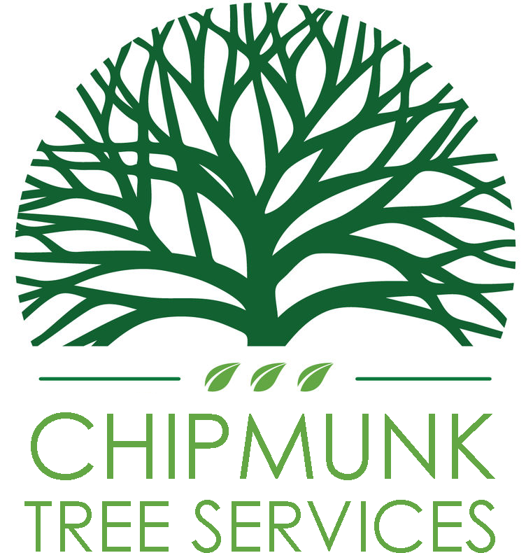 Chipmunk Tree Services