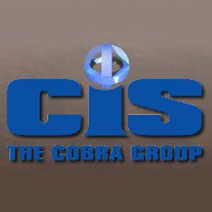 Cobra Integrated Systems Ltd