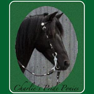 Charlie's Pride Ponies