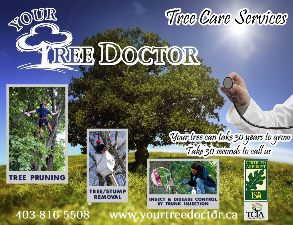 Your Tree Doctor & tree services nisku AB Local Businesses | 411.ca