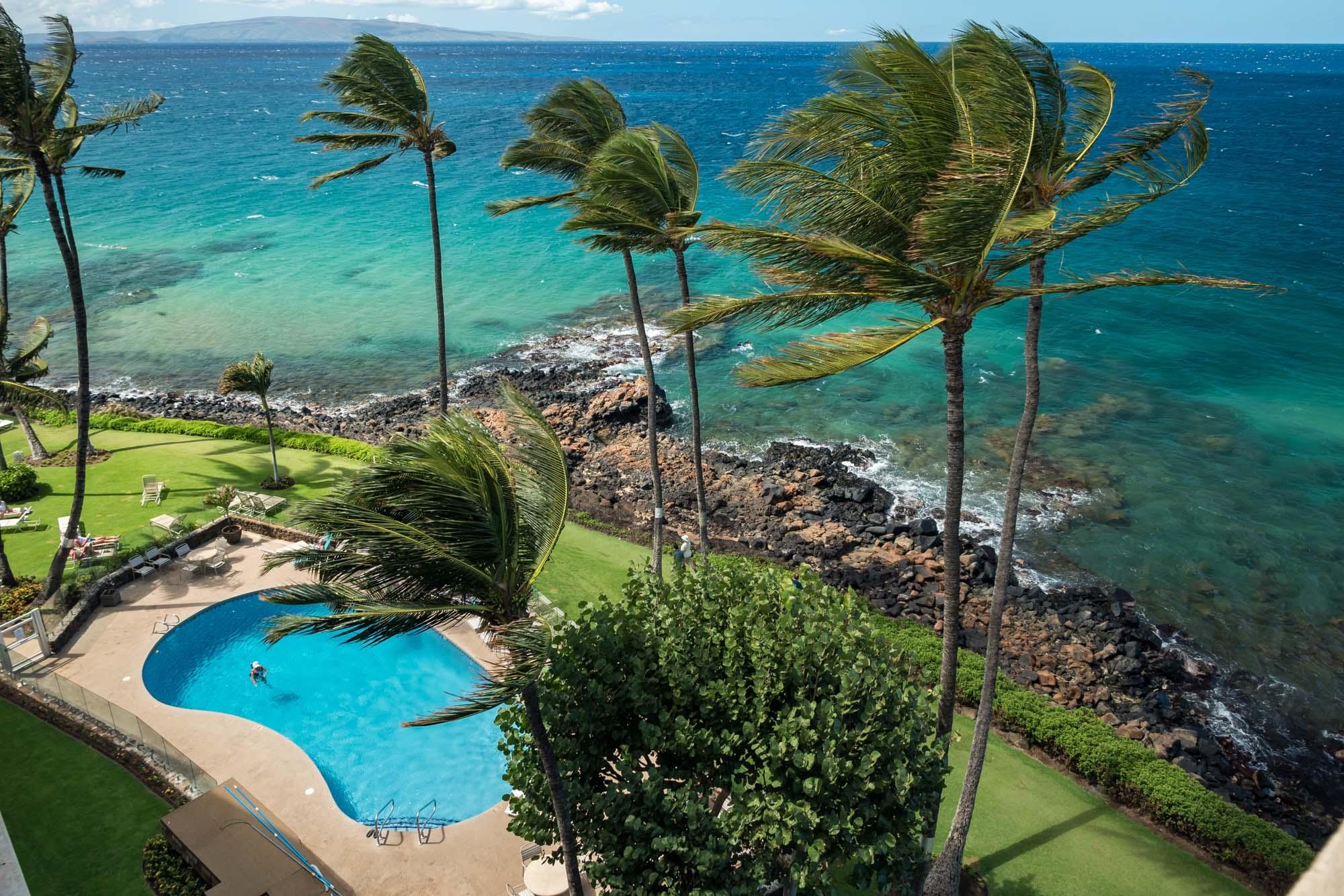 Royal Mauian Pool