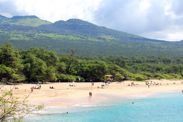 Ulupalakua Land for Sale Above Makena Beach