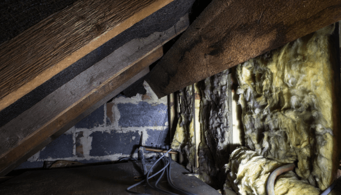 A crawlspace in a house that has radon and is for sale.