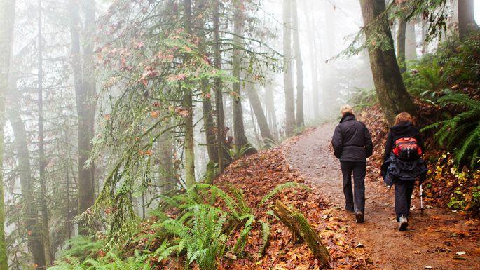 Hiking in Portland, OR
