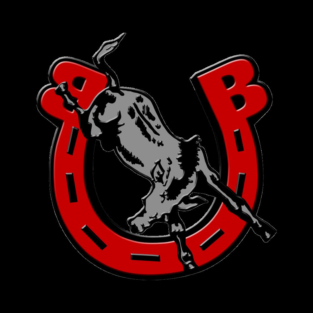 Bedford Public Schools School Logo