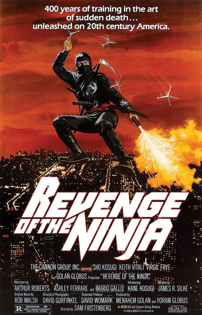 https://s3.amazonaws.com/uploads.bmxmuseum.com/user-images/36359/revenge-of-the-ninja-poster5794f0e7a6.jpg