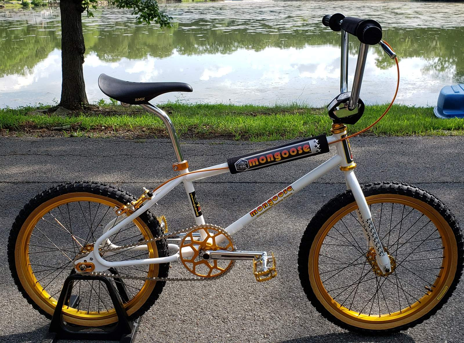 https://s3.amazonaws.com/uploads.bmxmuseum.com/user-images/89660/20190804_1629585d7d9d2d3e.jpg