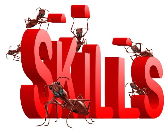 Skill Development for Employment Approach in 12th five year plan