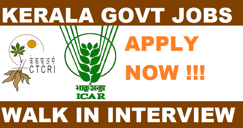 Central Tuber Crops Research Institute - CTCRI Recruitment - 03 Clerical assistant, Computer Assistant & Statistical assistant - Walk-in-Interview 28 December 2017
