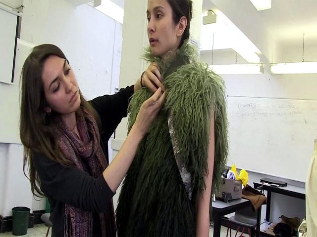 B.Sc (Hons.) Textile Science, Clothing & Fashion Studies
