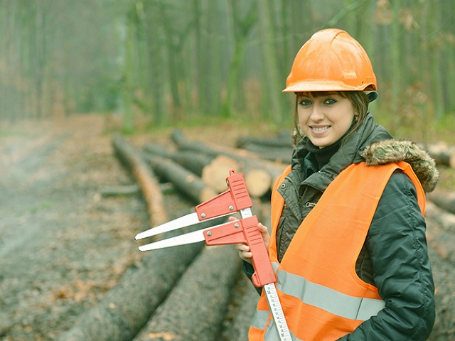 Diploma in Forestry