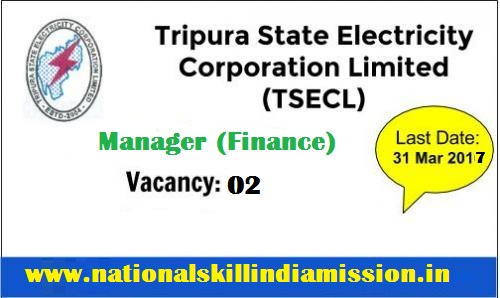 TSECL Recruitment-Tripura State Electricity Corporation Limited-Manager (Finance)-02 Vacancies-Pay Scale : Rs. 10230-34800/-Last date 31 March 2017