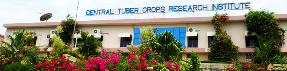 Central Tuber Crops Research Institute - CTCRI Recruitment - Support Staff - Temporary basis - Walk-in-Interview - 29 November 2017