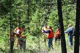 Institutions Offering Forestry Courses In India
